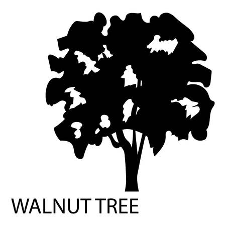 Walnut tree icon. Simple illustration of walnut tree vector icon for web Vettoriali