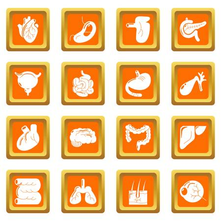Internal human organs icons set vector orange square isolated on white background
