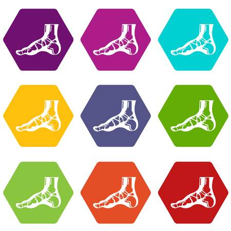 X-ray of foot icons 9 set colorful isolated on white for web. Stock Illustratie