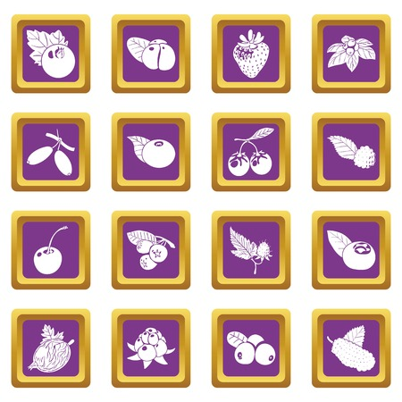 Berries icons set vector purple square isolated on white background