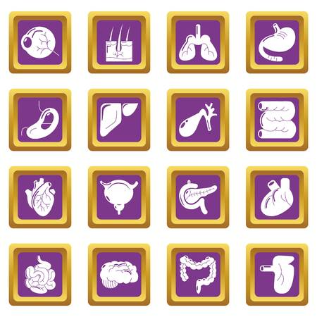 Internal human organs icons set vector purple square isolated on white background