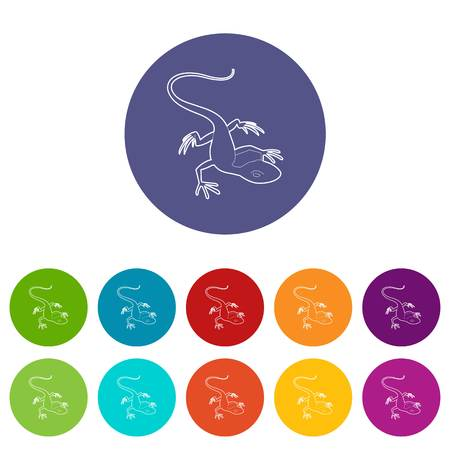 Little lizard icon. Outline illustration of little lizard vector icon for web