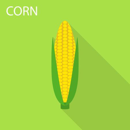 Corn icon. Flat illustration of corn vector icon for web design