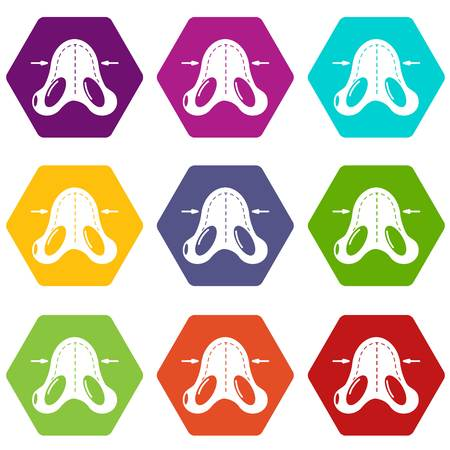 Nose reduction icons 9 set coloful isolated on white for web
