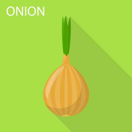 Onion icon. Flat illustration of onion vector icon for web design