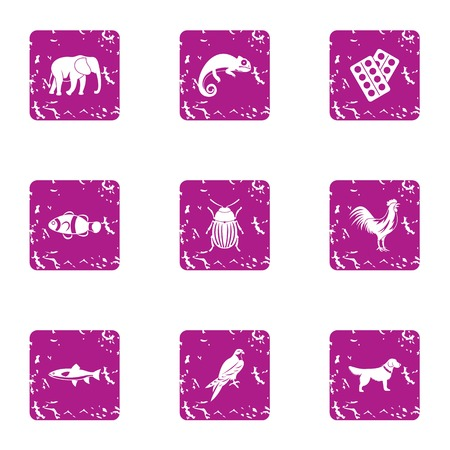 African wildlife icons set. Grunge set of 9 african wildlife vector icons for web isolated on white background