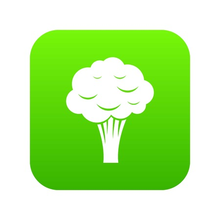 Broccoli icon digital green for any design isolated on white vector illustration. Illustration