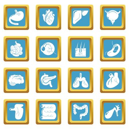 Internal human organs icons set vector sapphirine square isolated on white background