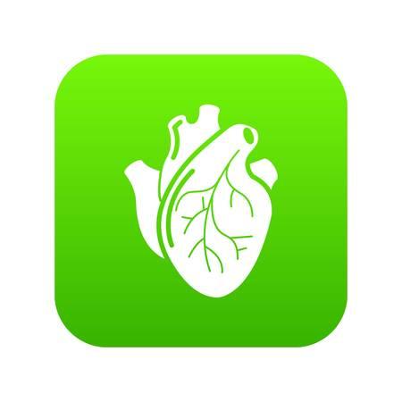 Human heart organ icon green vector