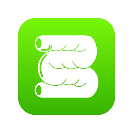 Large intestine icon green vector