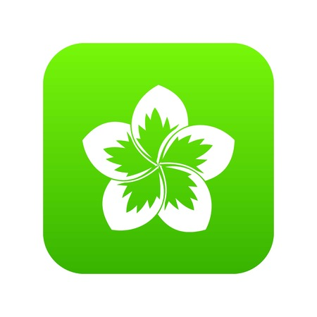 Frangipani flower icon digital green