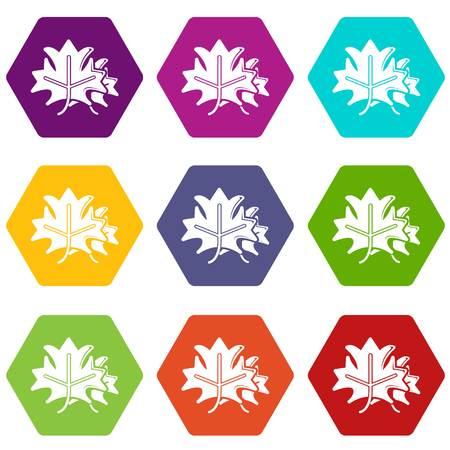 Maple icons set 9 vector 일러스트