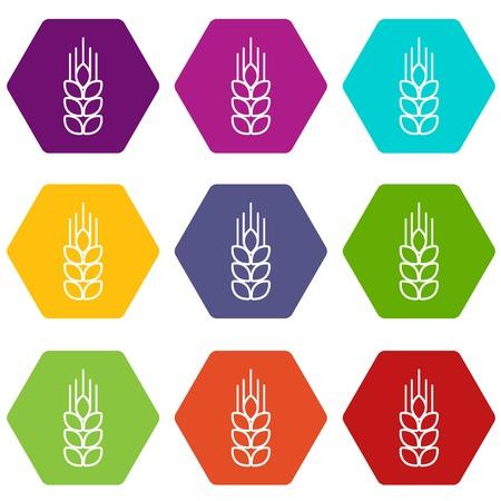 Wheat icons set 9 vector 일러스트