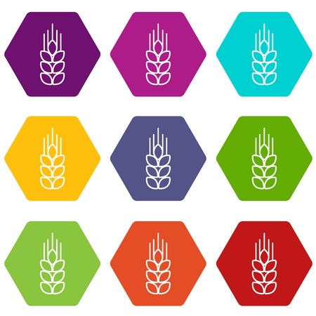 Wheat icons set 9 vector Illustration
