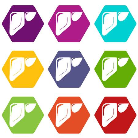 Liver icons set 9 vector