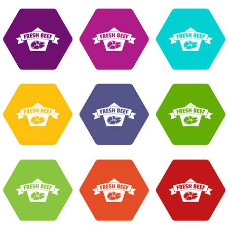 Fresh eco beef icons set 9 vector