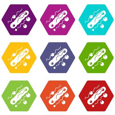 Corynebacterium icons set 9 vector