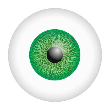 Green iris eyeball mockup. Realistic illustration of green iris eyeball vector mockup for web design isolated on white background Illustration