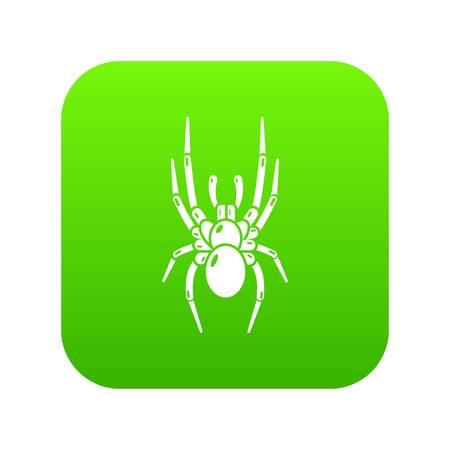 Spider icon, simple black style Illustration