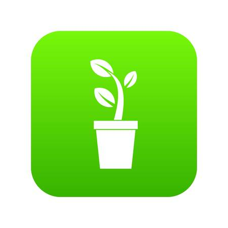 Sprout in pot icon digital green