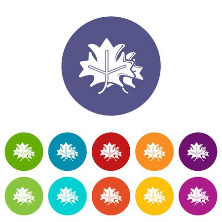 Maple icons set vector color