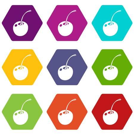Cherry icons set 9 vector