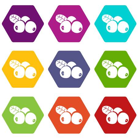 Lingonberry icons set 9 vector Illustration