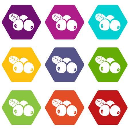 Lingonberry icons set 9 vector Ilustracja