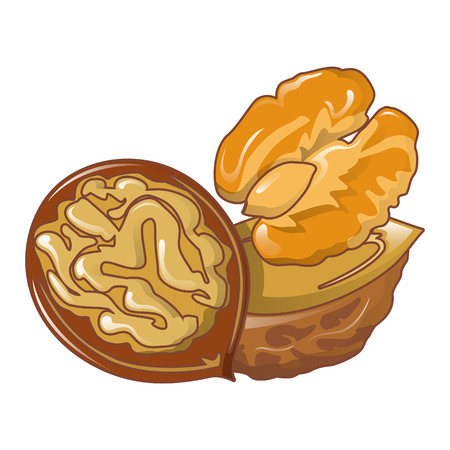 Walnuts icon, cartoon style
