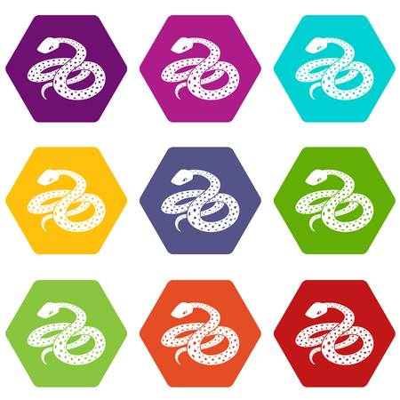 Mexican kingsnake icons 9 set coloful isolated on white for web