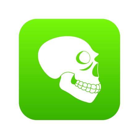 Skull icon green vector 일러스트