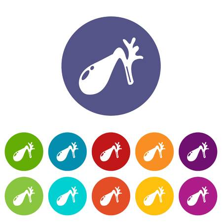 Gallbladder icons set vector color Illustration
