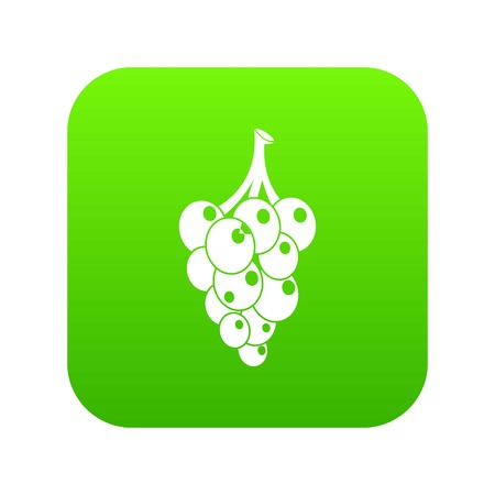 Grape icon green vector isolated on white background