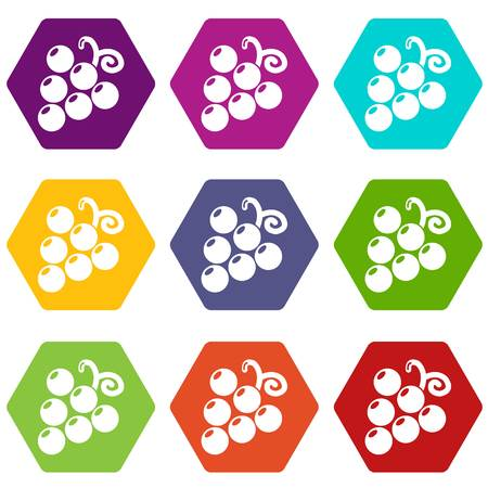 Grapes icons set 9 vector