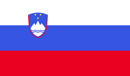 Slovenia flag image for any design in simple style
