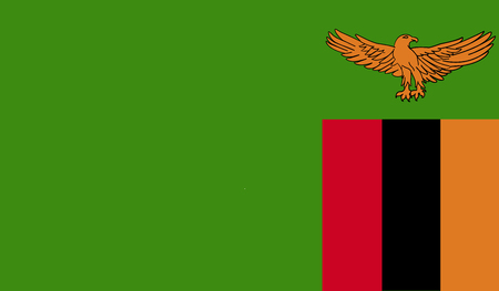 Zambia flag image for any design in simple style Stock Photo