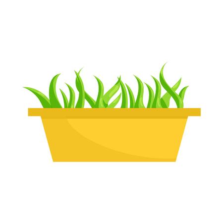 Les jeunes plants de germes dans une icône de boîte à fleurs en plastique en style cartoon sur fond blanc