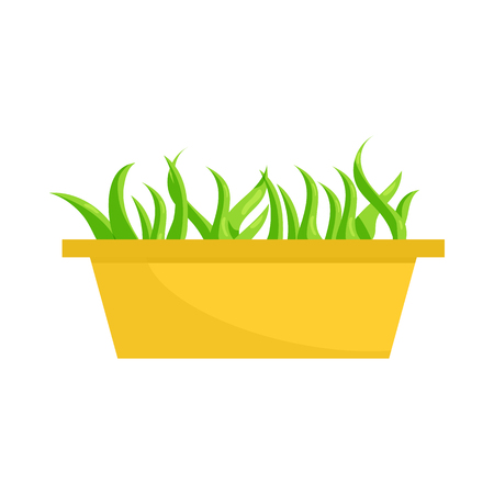 Young sprout seedlings in a plastic flower box icon in cartoon style on a white background