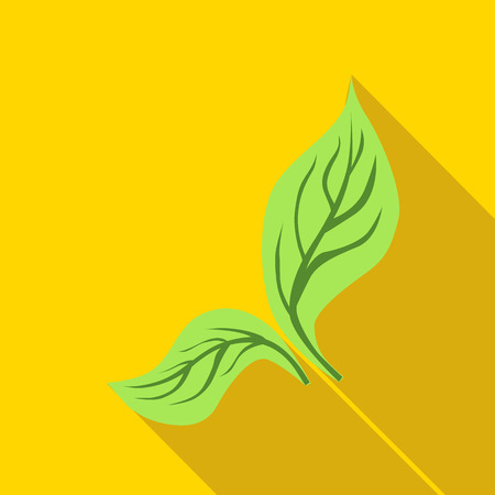 Green mint leaves icon in flat style isolated with long shadow
