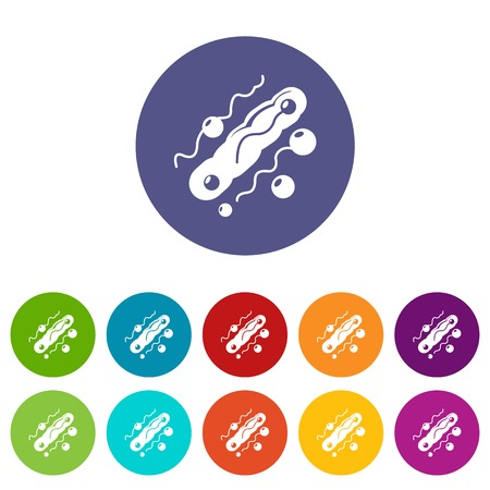 Corynebacterium icons color set vector for any web design on white background