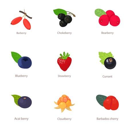Beeren-Sortenikonen eingestellt. Cartoon-Satz von 9 Beeren-Sortenvektorikonen für das Netz lokalisiert auf weißem Hintergrund