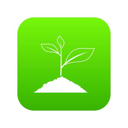 Growing plant icon digital green for any design isolated on white vector illustration Illustration