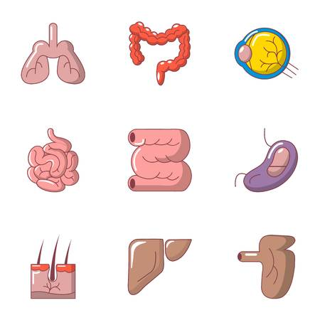 Inner organ icons set. Cartoon set of 9 inner organ vector icons for web isolated on white background