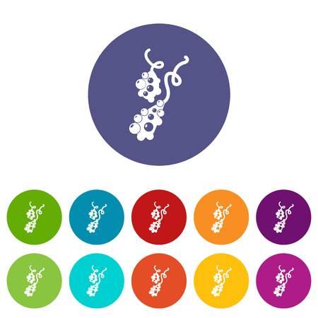 Micro vibrio icons color set vector for any web design on white background Ilustração