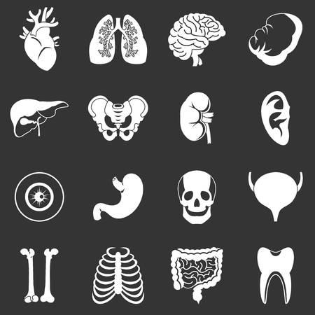 Human organs icons set grey