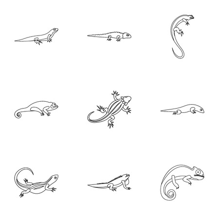 Lizard icons set, outline style Stock Photo