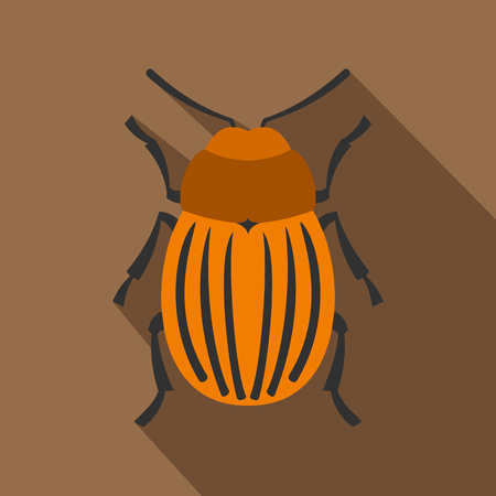 Colorado beetle icon. Flat illustration of colorado beetle icon for web Banque d'images - 107338118