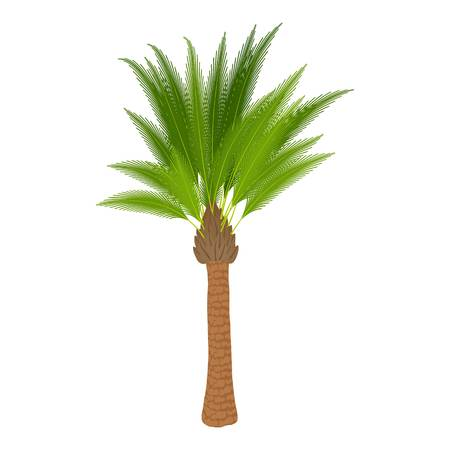Traditional palm icon, cartoon style Standard-Bild - 107362398