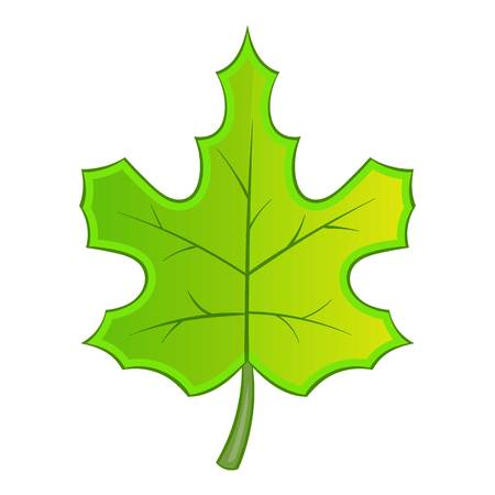 Green maple leave icon, cartoon style Stock Photo