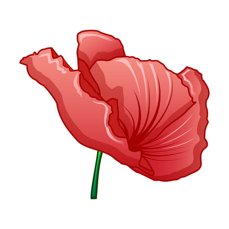 Red poppy icon. Cartoon of red poppy vector icon for web design isolated on white background Illustration